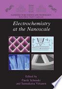 Electrochemistry At The Nanoscale Book PDF