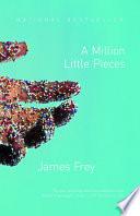 A Million Little Pieces image