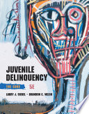 Juvenile Delinquency The Core Book PDF