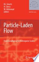 Particle Laden Flow