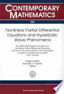 Nonlinear Partial Differential Equations and Hyperbolic Wave Phenomena