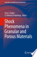 Shock Phenomena in Granular and Porous Materials