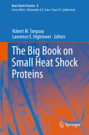 The Big Book on Small Heat Shock Proteins
