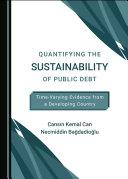 Quantifying the Sustainability of Public Debt