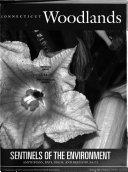 Connecticut Woodlands