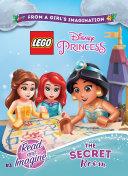 LEGO Disney Princess  Chapter Book PDF