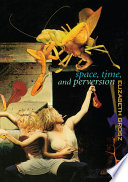 Space  Time and Perversion Book