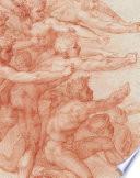 link to Michelangelo : divine draftsman & designer in the TCC library catalog