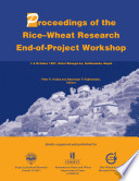 Rice wheat research end of project