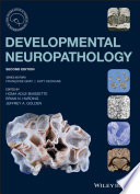 Developmental Neuropathology