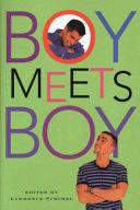 Boy Meets Boy ebook