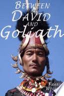 Between David and Goliath