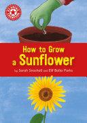 How to Grow a Sunflower