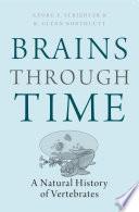 Brains Through Time