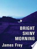 Bright Shiny Morning LP
