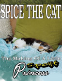 Spice the Cat  The Making of a Little Spoilt Princess