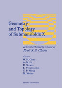 Geometry and Topology of Submanifolds X