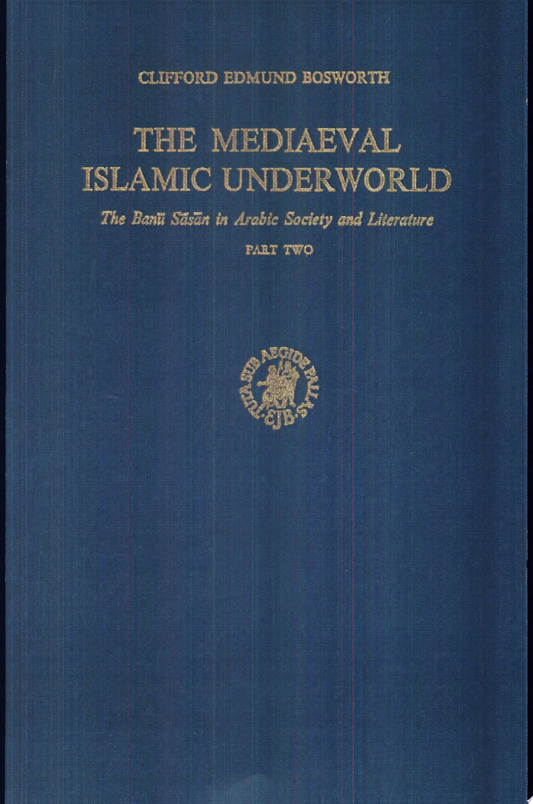 The mediaeval islamic underworld