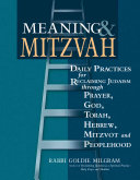 Meaning   Mitzvah