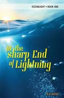 Pdf At the Sharp End of Lightning