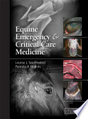 Equine Emergency And Critical Care Medicine Book PDF