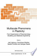 Multiscale Phenomena in Plasticity  From Experiments to Phenomenology  Modelling and Materials Engineering
