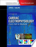 Cardiac Electrophysiology  From Cell to Bedside E Book