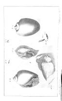 الصفحة 708