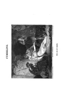 Strona 408