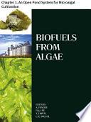 Biofuels from Algae Book