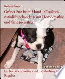Glaukom, Grüner Star beim Hund Behandlung mit Homöopathie, Schüsslersalzen (Biochemie) und Naturheilkunde