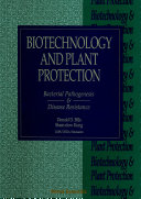Biotechnology And Plant Protection  Bacterial Pathogenesis And Disease Resistance   Proceedings Of The Fourth International Symposium