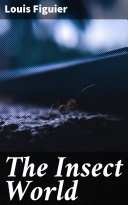 The Insect World Pdf/ePub eBook