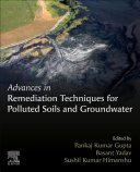 Advances in Remediation Techniques for Polluted Soils and Groundwater
