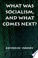 What Was Socialism  and What Comes Next
