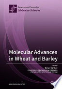 Molecular Advances in Wheat and Barley