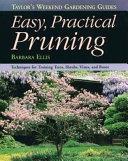 Easy Practical Pruning