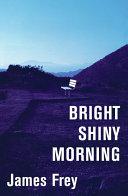 Bright Shiny Morning Book