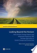 Looking Beyond the Horizon
