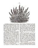 Seite 58
