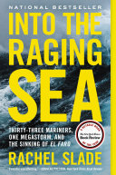Into the Raging Sea [Pdf/ePub] eBook