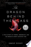 The Dragon Behind the Glass image
