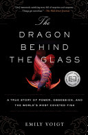 The Dragon Behind the Glass Pdf/ePub eBook