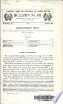 Chrysanthemum Midge Book PDF