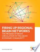 Firing Up Regional Brain Networks