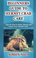 Beginners Guide to Hermit Crab Care