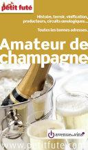 AMATEUR DE CHAMPAGNE 2016 Petit Futé ebook