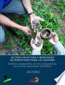 Acción colectiva y mercados alternativos para la castaña: análisis comparativo de tres cooperativas en el norte amazónico de bolivia
