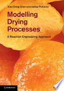Modelling Drying Processes Book PDF