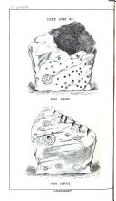 Strana 258